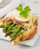 Сандвич сыра ветчины спаржи Стоковые Изображения RF