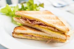 Сандвич сыра ветчины Стоковое Фото