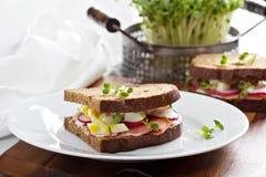 Сандвич с копчеными семгами, редисками и яичком Стоковые Фото