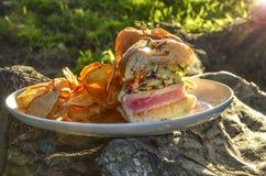 Сандвич тунца Ahi Стоковые Изображения