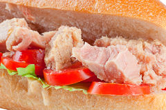 Сандвич туны стоковое фото rf