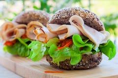 Сандвич Турции Стоковые Фотографии RF
