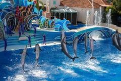 САН-ДИЕГО, США - 15-ое ноября 2015 - мир выставки дельфина на море Стоковое Фото