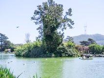 САН-ФРАНЦИСКО, CA - 4-ое апреля 2017 - молодая семья ослабляет на озере Stow в Golden Gate Park стоковые фотографии rf