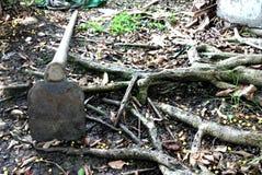 Сапка помещенная в саде стоковая фотография rf