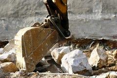сапка самеца оленя стоковая фотография rf
