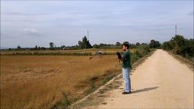 Сапсан покидая перчатка соколиного охотника сток-видео
