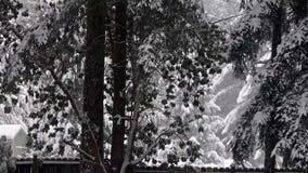 Сарай и загородка сада под деревьями покрытыми сильным снегопадом видеоматериал