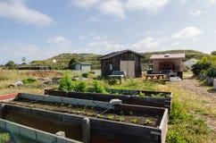Сарай и плантаторы сада стоковые фотографии rf