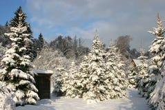 Сарай страны зимы стоковое изображение rf