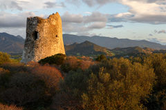 Сардиния, Италия - руины вахты возвышаются стоковое изображение