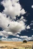 Сардиния Стоковое фото RF