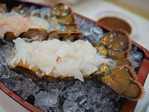 Сасими омара Стоковые Фото