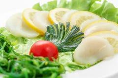 Сасими scallops, овощей, салата, томата, scallop сверх Стоковое Изображение RF