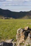 сатурация природы стоковое изображение rf