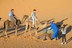 Сафари верблюда в пустыне песка Стоковое Фото