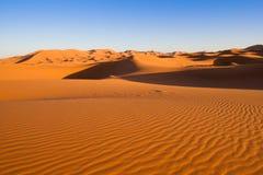 Сафари верблюда на западной пустыне Сахары Стоковые Изображения