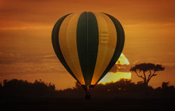 Сафари воздушного шара Стоковое Изображение