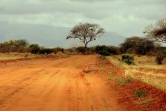 сафари ландшафта Стоковая Фотография RF