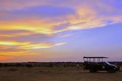 Сафари на заходе солнца Стоковые Изображения RF
