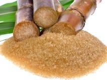 Сахарный тростник изолированный на белой предпосылке Стоковые Фотографии RF