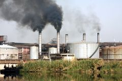 сахар рафинадного завода Стоковые Фото