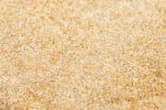 Сахар сырец, Unrefine Стоковые Изображения RF