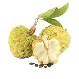 Сахар-яблоко с поперечным сечением Стоковая Фотография