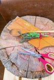 сад ароматичной предпосылки свежий сжал rosemary петрушки мяты трав травы тимиан старого мудрый деревянный Тимиан, розмариновое м Стоковое фото RF