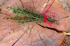 сад ароматичной предпосылки свежий сжал rosemary петрушки мяты трав травы тимиан старого мудрый деревянный Тимиан, розмариновое м Стоковая Фотография RF