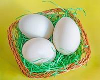 Салатовая утка eggs, коричневая корзина с травой, желтым backgroun Стоковое фото RF