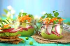 Салат весны редисок Стоковые Изображения