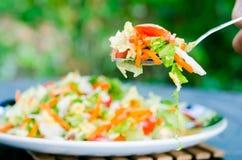 Салат весны Стоковые Изображения