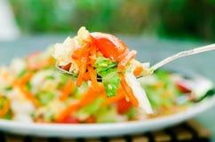 Салат весны Стоковые Фотографии RF