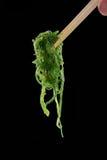 Салат водорослей стоковые фотографии rf