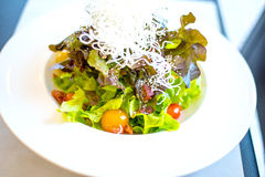 Салат в белом блюде стоковое фото