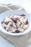 Салат гриба Porcini с сельдереем, radicchio и пармезаном от Стоковые Фото