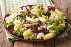 Салат зажаренных в духовке свекл, свежий ананас, плавленый сыр, анакардии a Стоковые Изображения