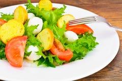 Салат зеленых салата, томата, Bruschetta и моццареллы Стоковое фото RF