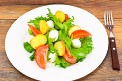 Салат зеленых салата, томата, Bruschetta и моццареллы Стоковая Фотография RF