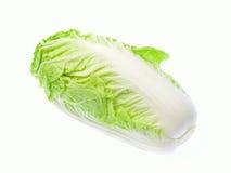 Салат изолированный на белой предпосылке Стоковое Фото