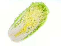 Салат изолированный на белой предпосылке Стоковые Изображения