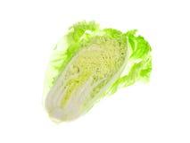 Салат изолированный на белой предпосылке Стоковое Изображение RF