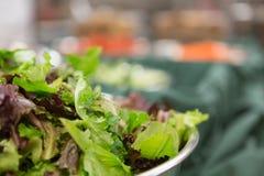 Салат кухни Стоковое Фото