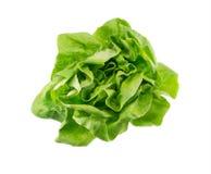 Салат масла Стоковое фото RF