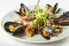 Салат морепродуктов на круговой плите на белой предпосылке стоковое изображение