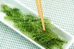 Салат морской водоросли, здоровый продукт моря в блюде Овальная морская водоросль виноградин Стоковое Изображение RF