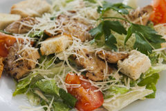 Салат мяса с овощами и гренками Стоковое Изображение RF