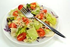 Салат на плите стоковое фото rf