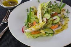 Салат овощей весны Стоковые Фотографии RF